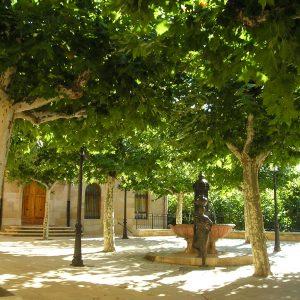 Protegerse del sol de verano en las plazas sombreadas en Navarrete, La Rioja