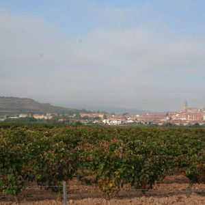 Vista de Navarrete,, La Rioja